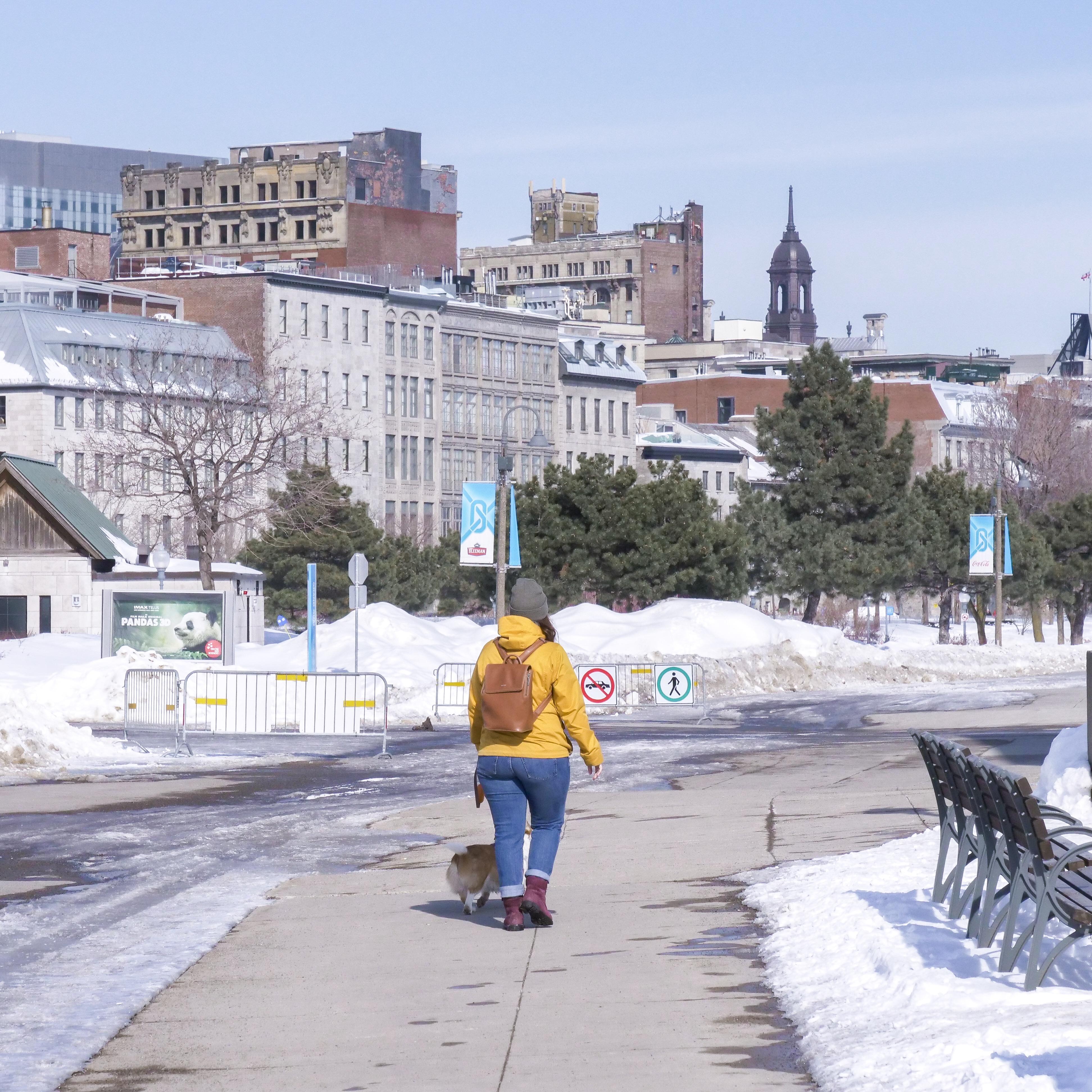 Découvrir Montréal