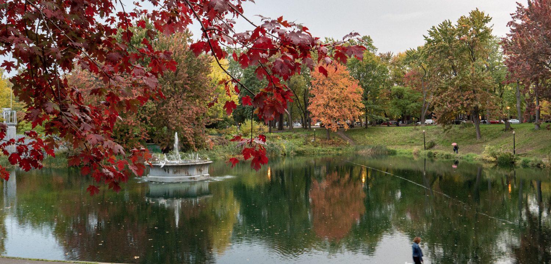 automne-montréal-lafontaine