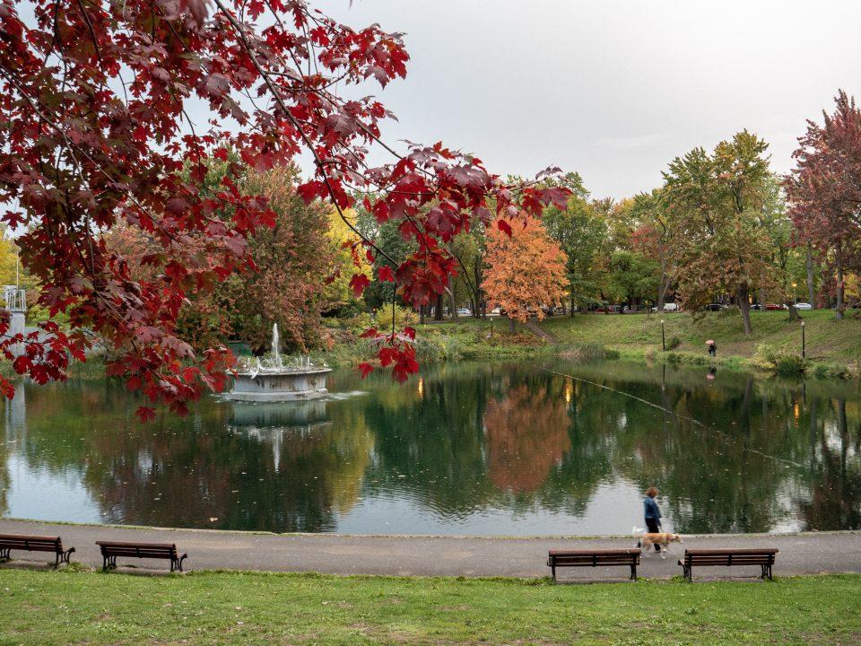 parc-lafontaine-automne